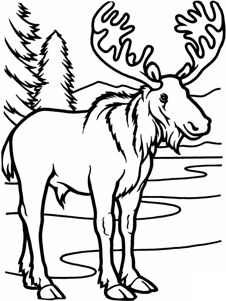 printables coloring pages - photo#19