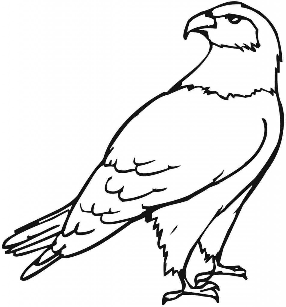 Free printable eagle coloring pages for kids for Photo to coloring page