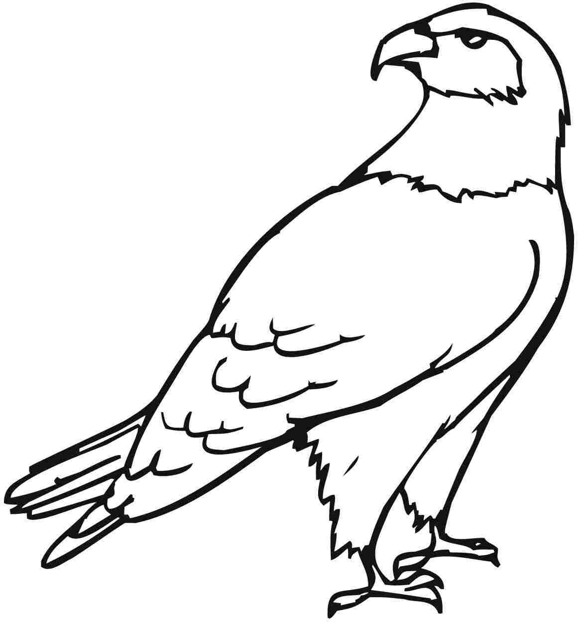 eagle coloring pages for kids - photo #1