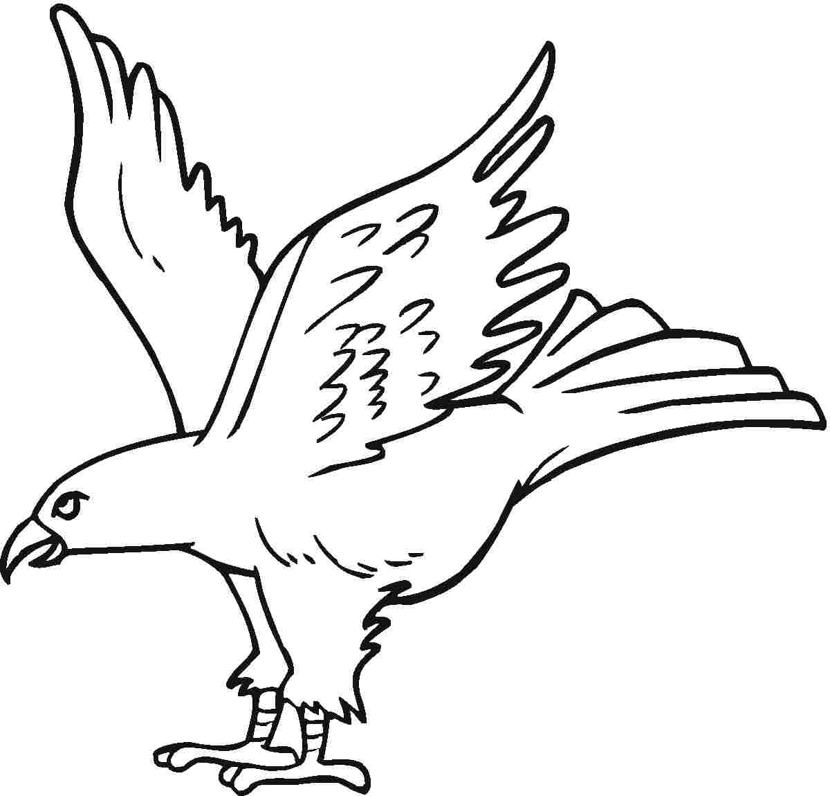 eagle coloring pages for kids - photo #7