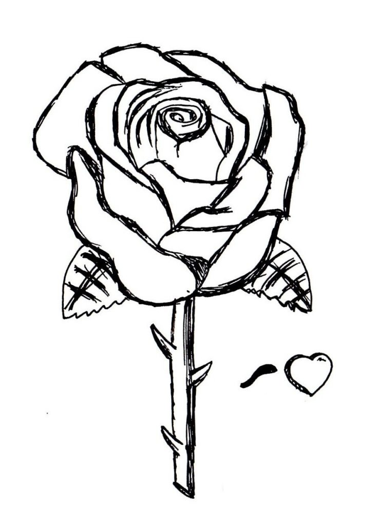 Irresistible image for roses coloring pages printable