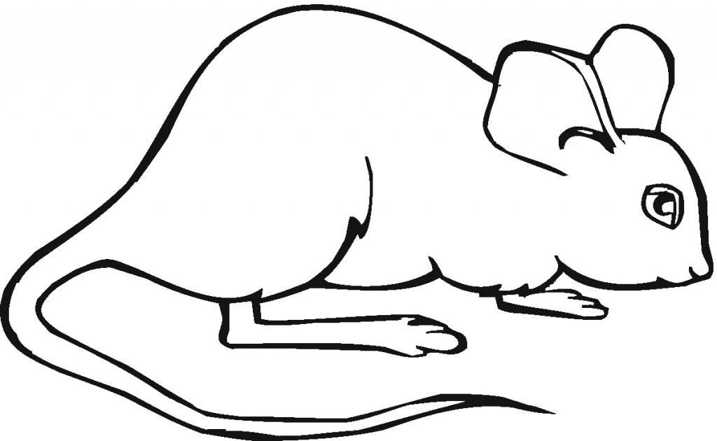 Computer Mouse Sketch Sketch Coloring