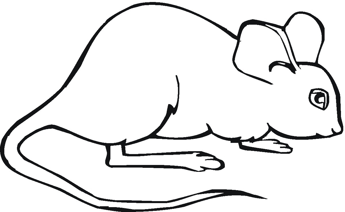 Mouse Coloring Pages For Free