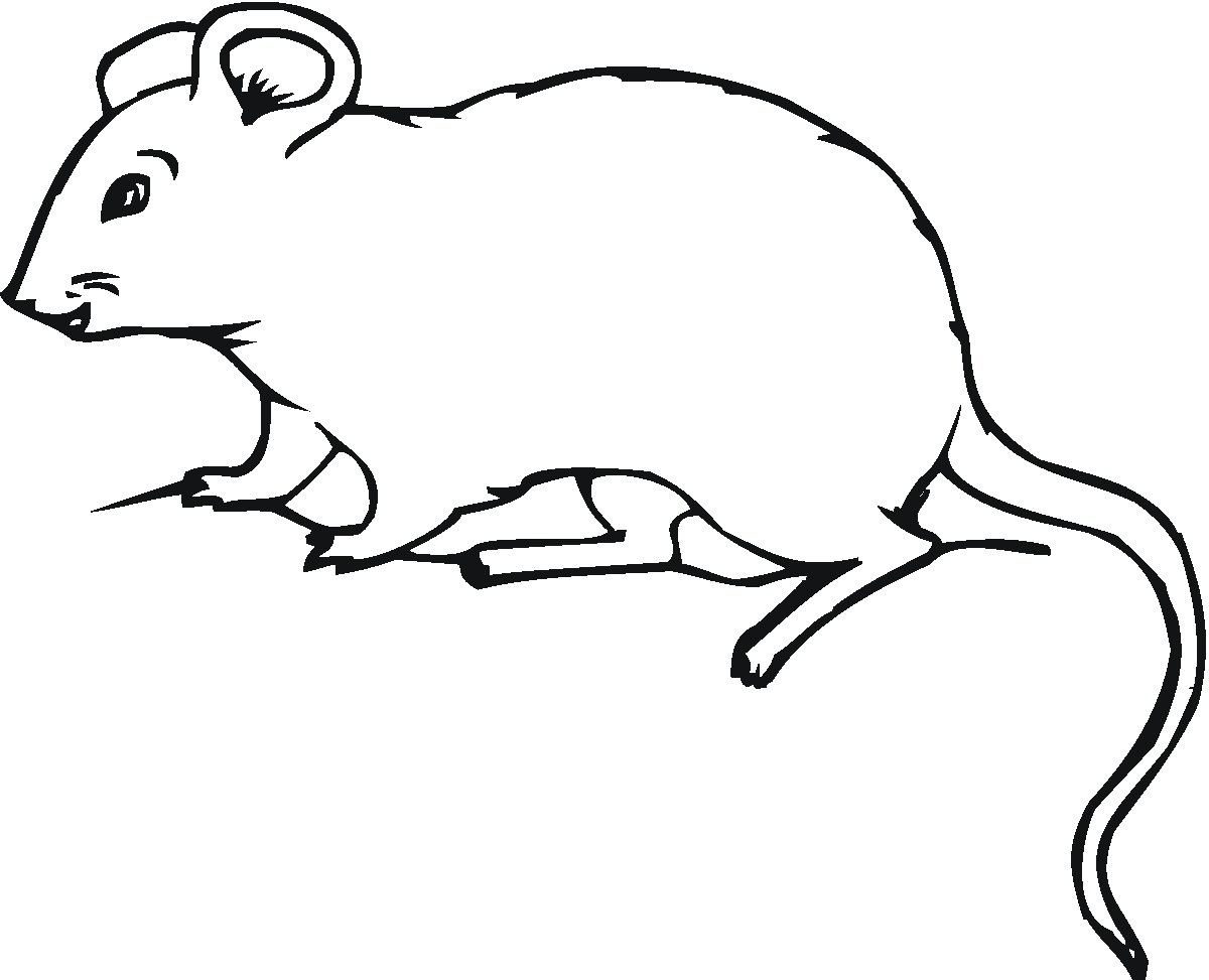 Mouse Coloring Pages For Kids