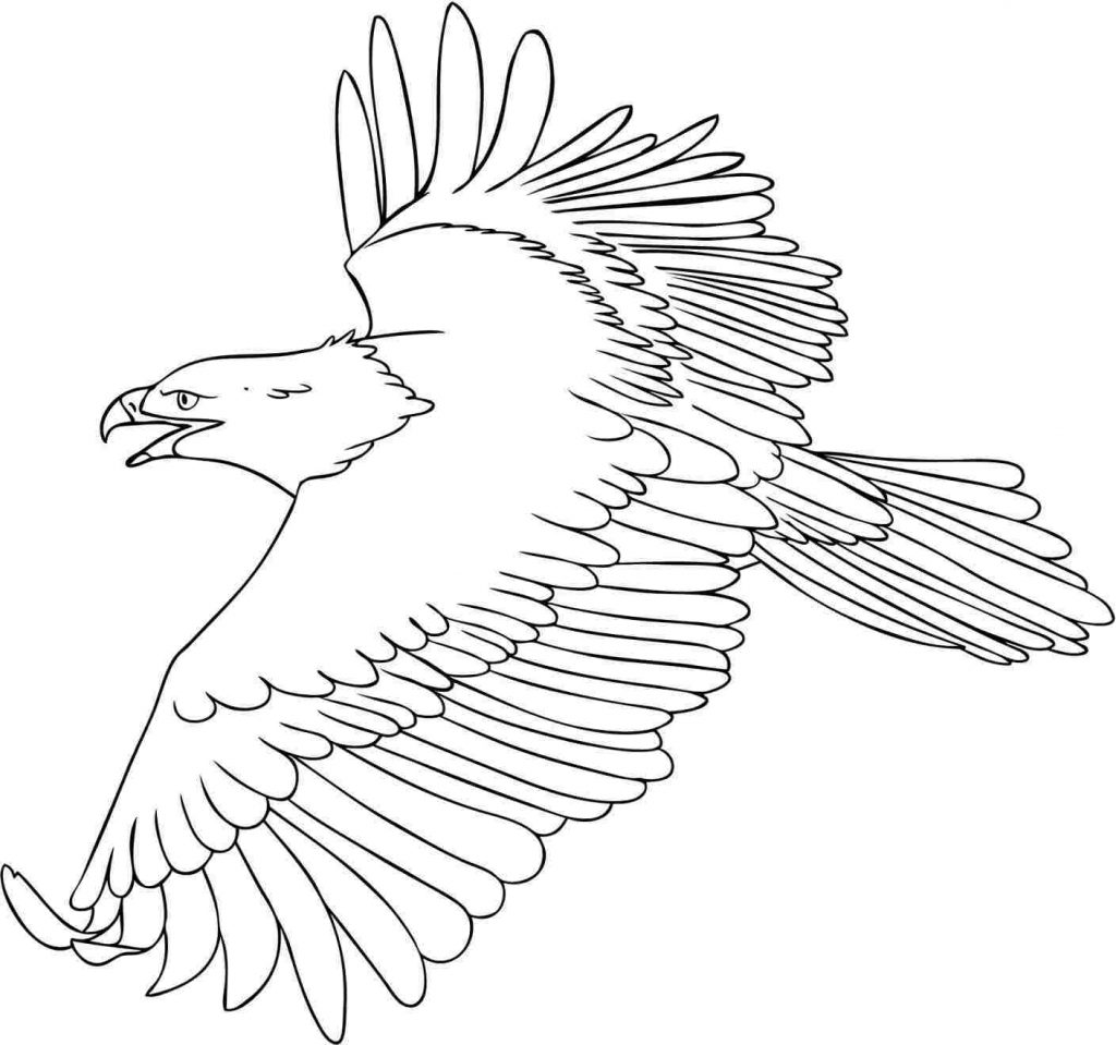 eagle coloring pages for kids - photo #8