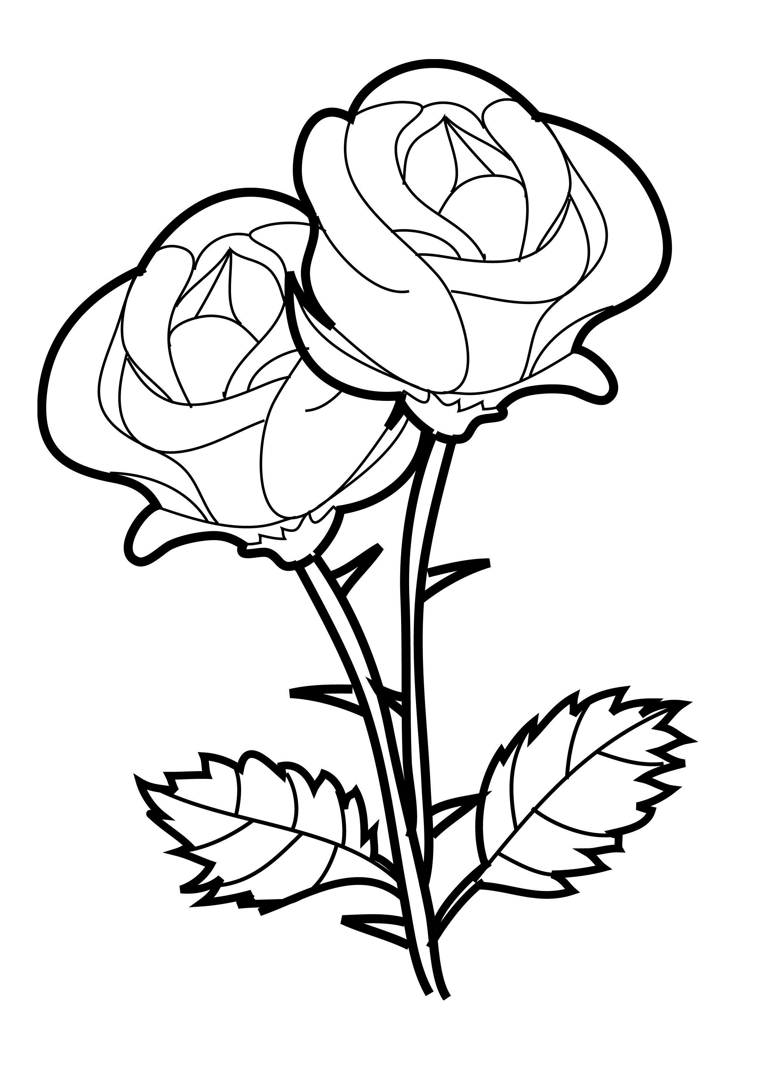 rose coloring pages for kids - photo#4