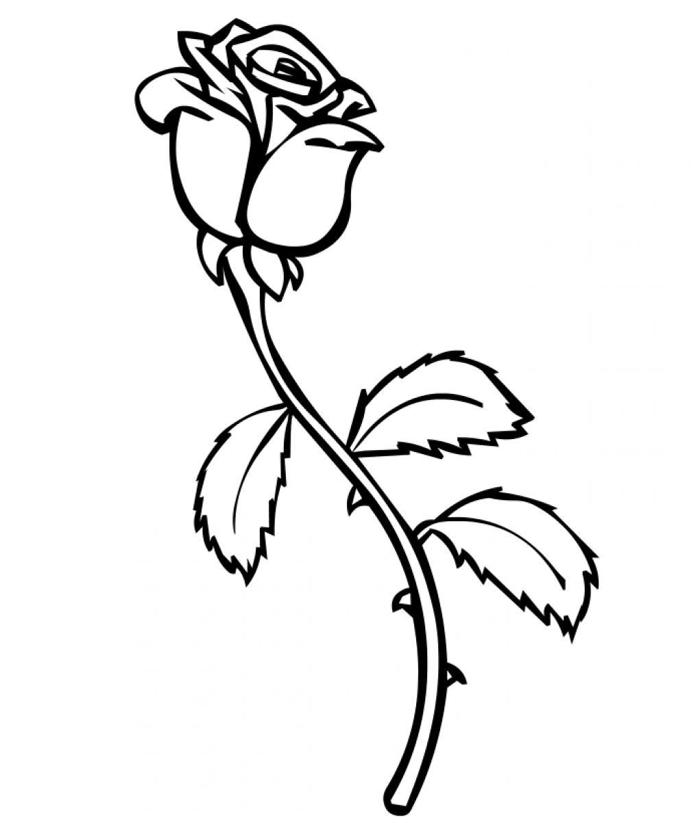 Coloring sheets roses - Rose Coloring Pages For Kids