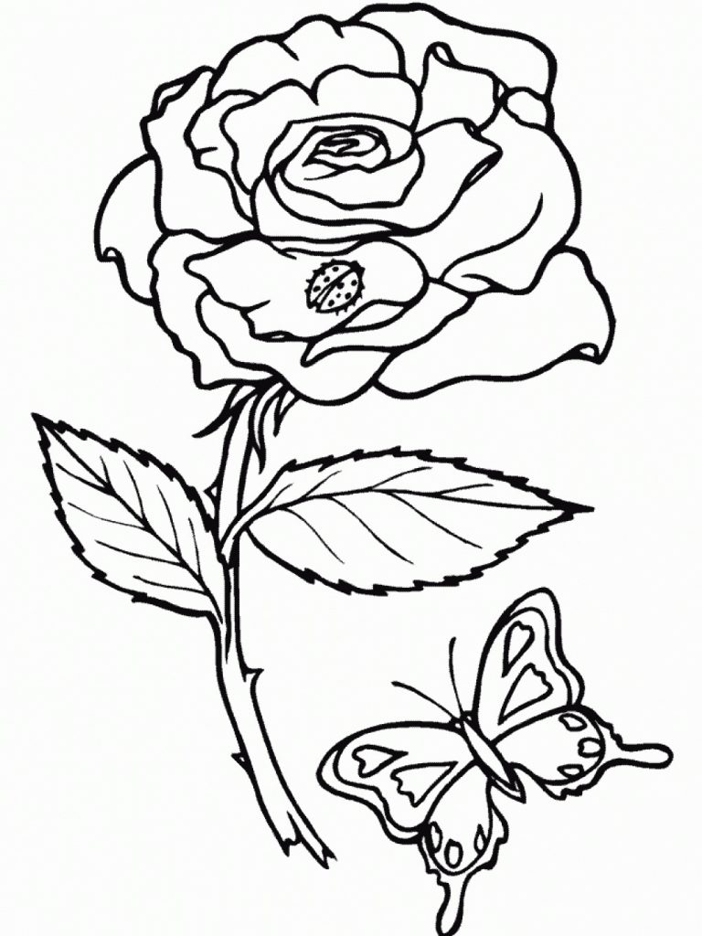 rose coloring pages for kids - photo#21