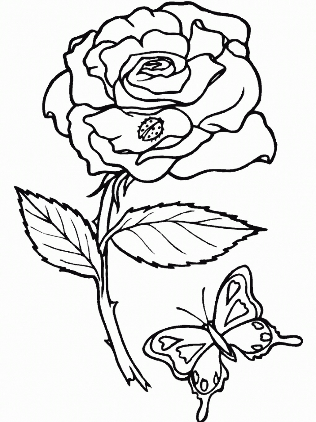 Free printable roses coloring pages for kids for Coloring pages of a flower