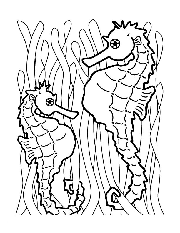 seahorse coloring pages to print - photo#9