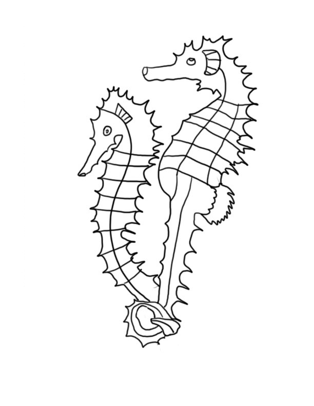 seahorse coloring pages to print - photo#26