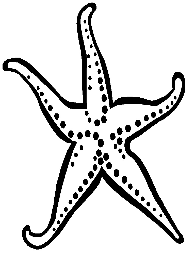 starfish coloring page - Starfish Coloring Pages