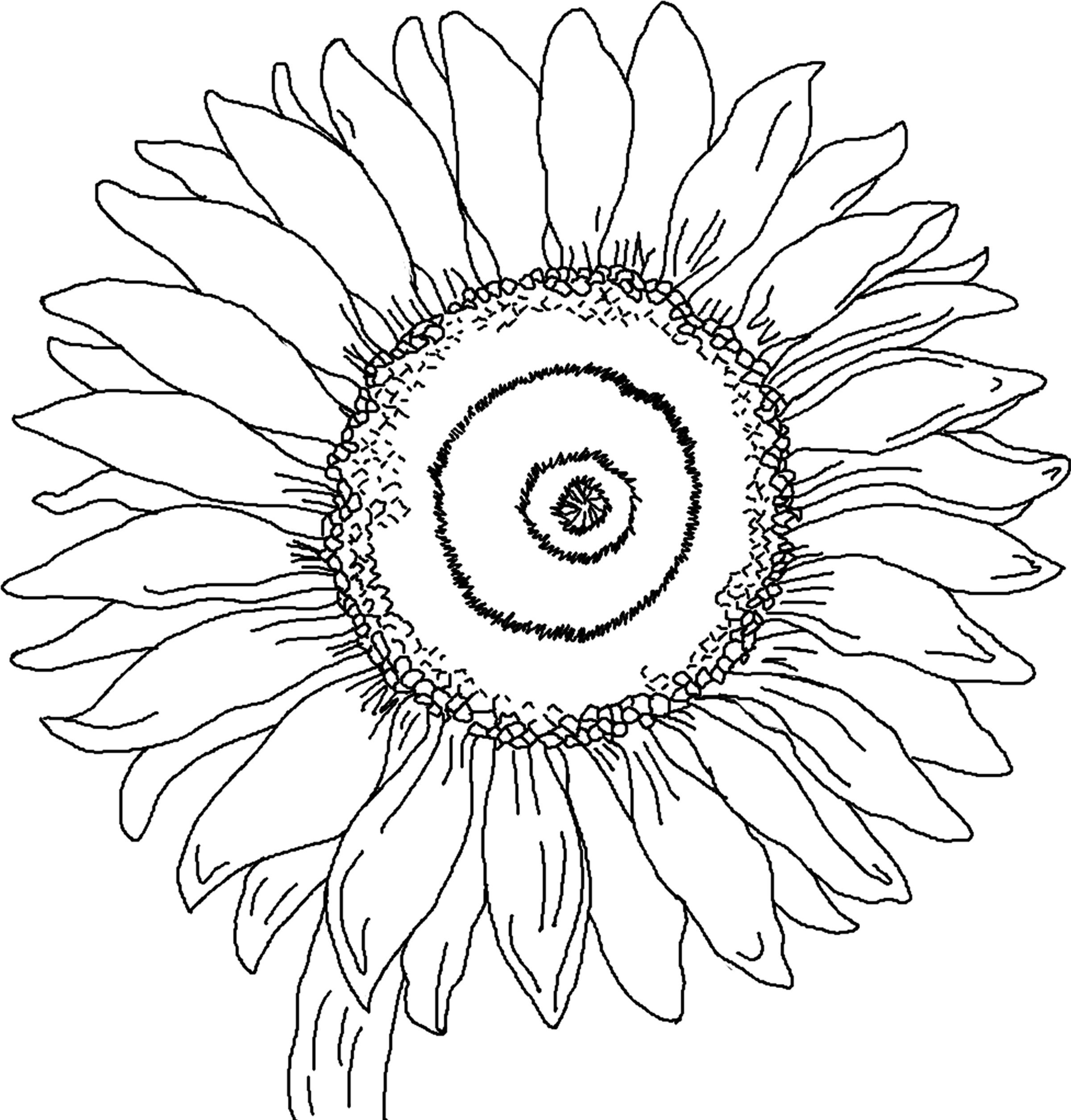 free kid coloring book pages - photo#31