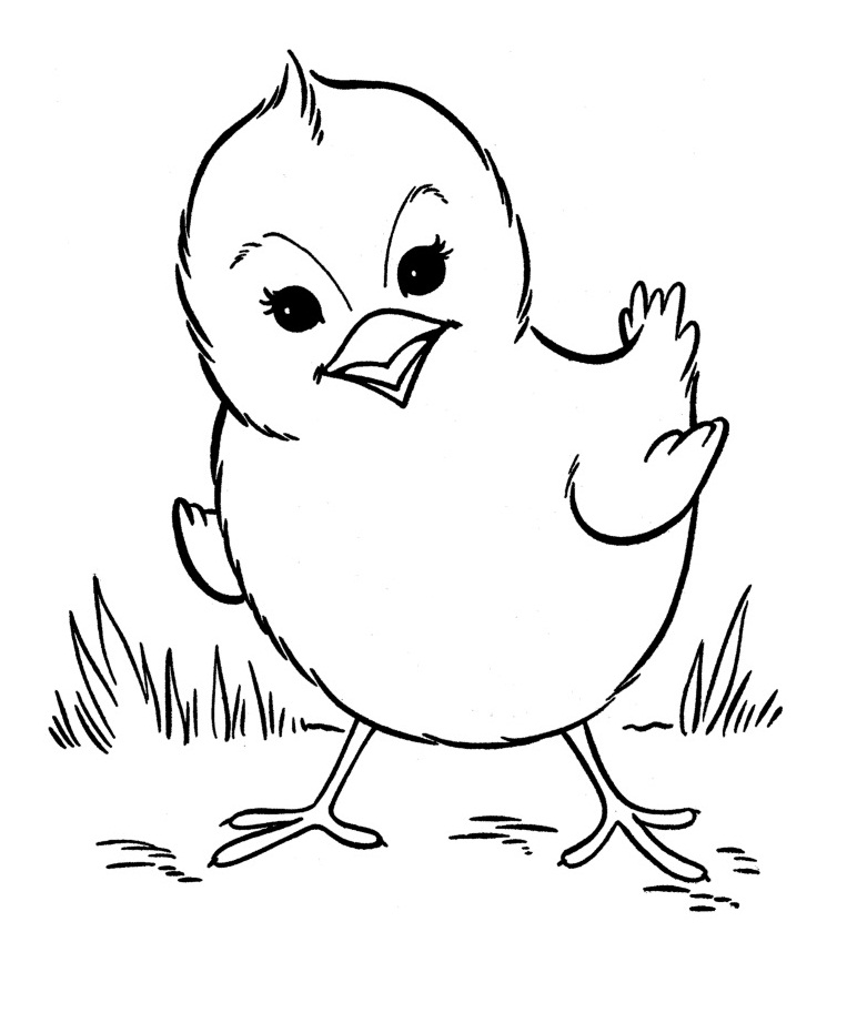 Gentil Baby Farm Animal Coloring Pages
