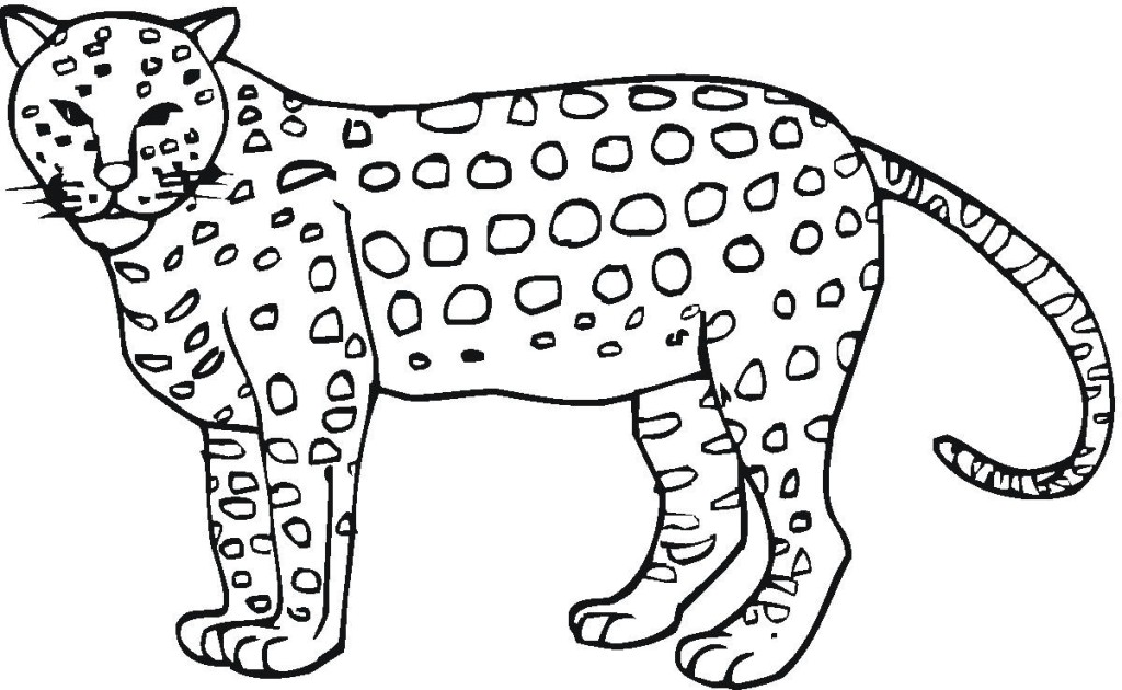 Free Printable Cheetah Coloring Pages For Kids Cheetah Coloring Page