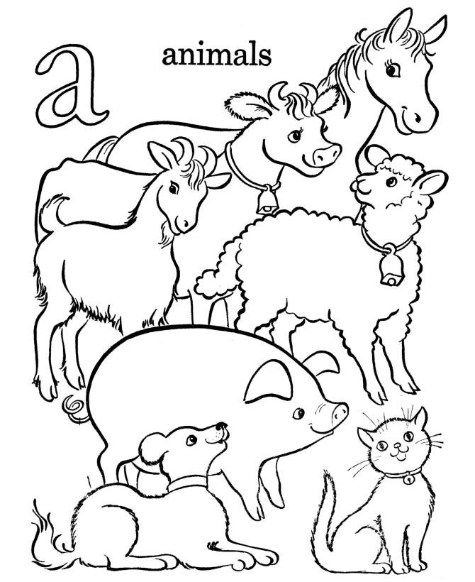 farm animal color pages - Picture Of Animals To Color