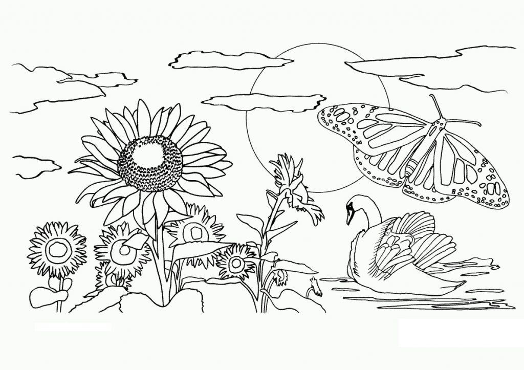 Nature Coloring Pages