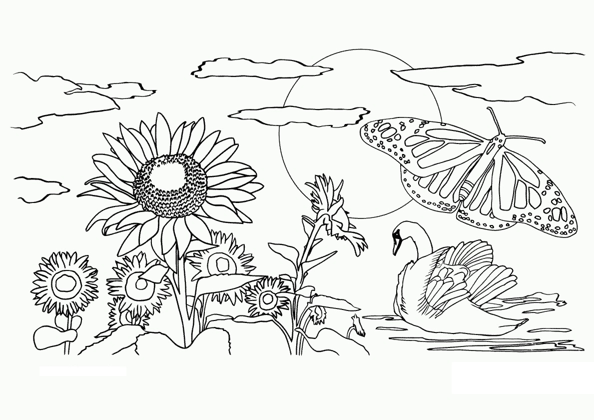 nature coloring pages print - photo#2