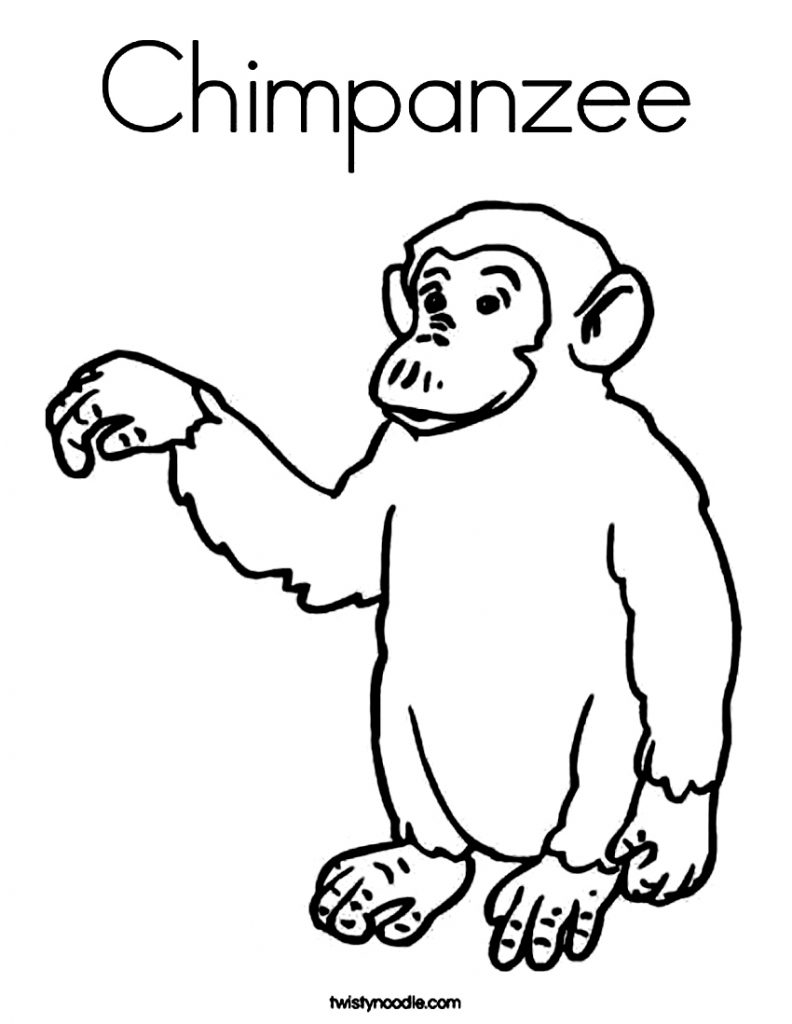 Baby Chimpanzee Coloring Pages
