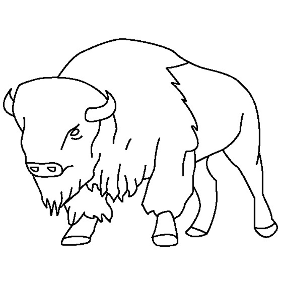 Bison Coloring Pages Pictures
