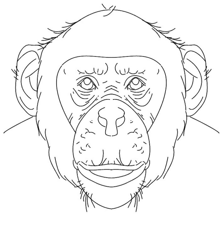 Chimpanzee Face Coloring Pages