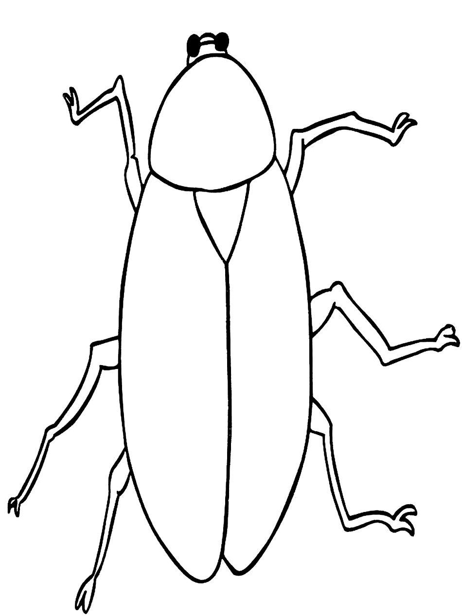 cockroach coloring pages pictures - Free Cartoon Coloring Pages