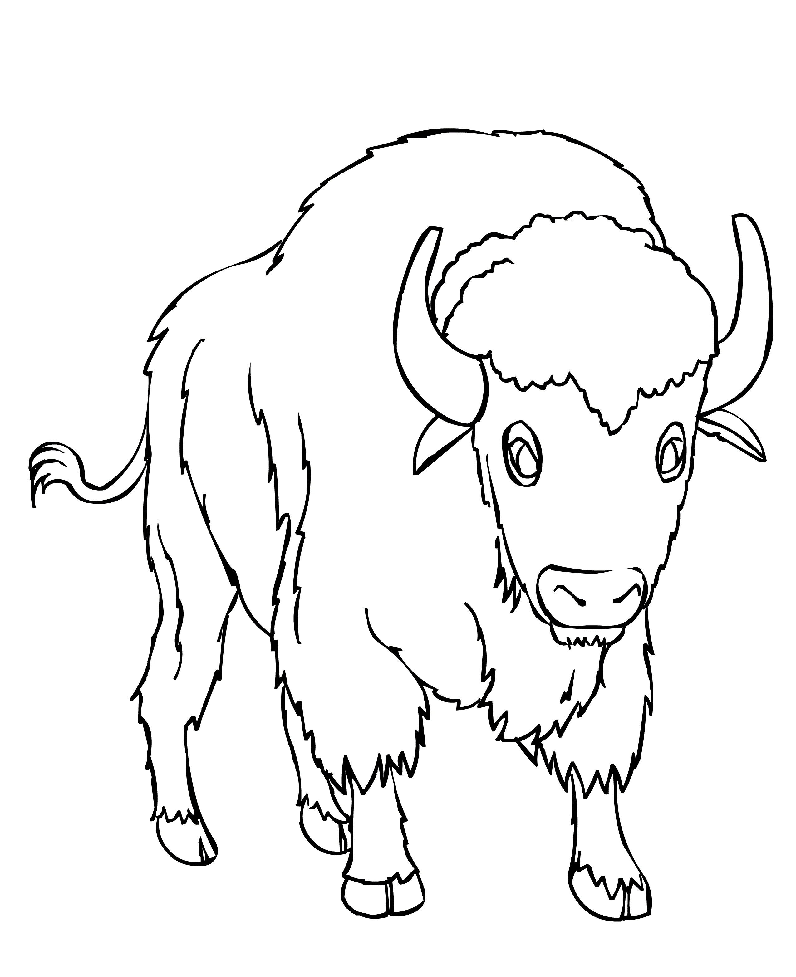 free printable bison coloring pages for kids