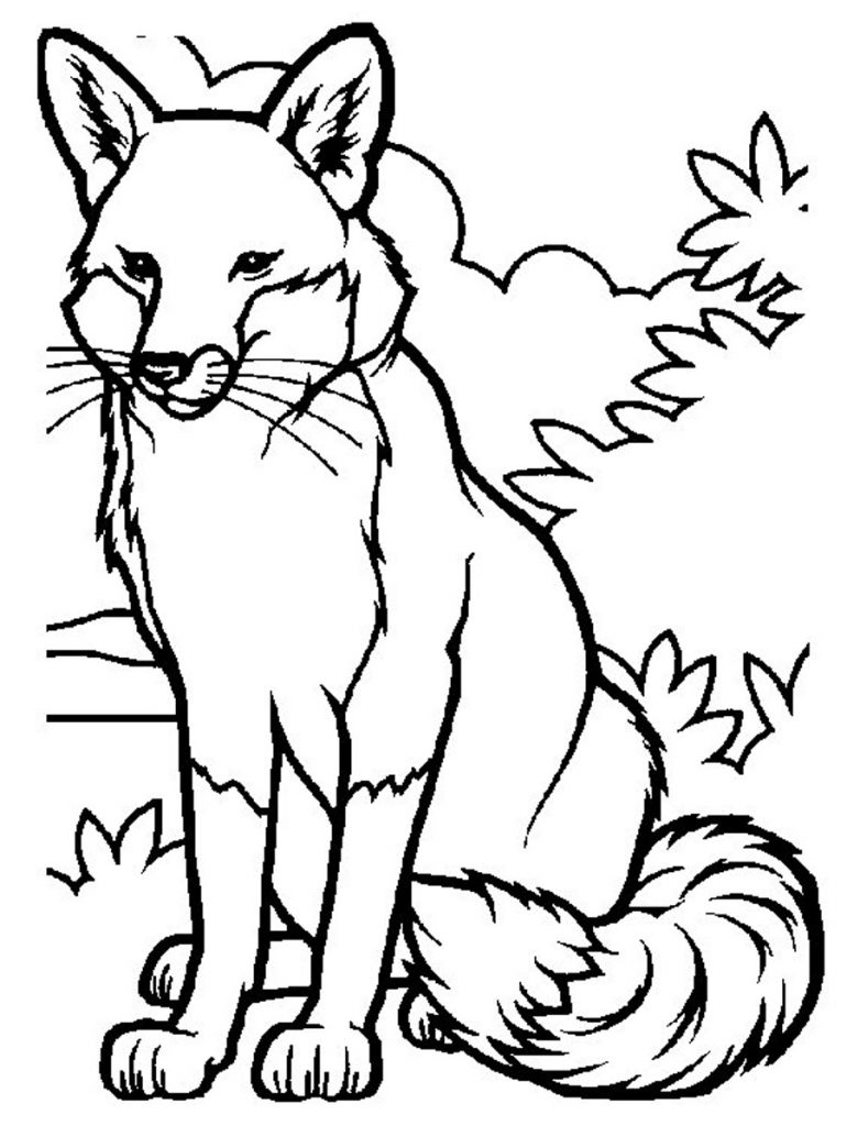 Free printable fox coloring pages for kids for Free animal coloring pages kids