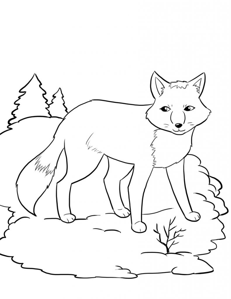 Fox Coloring Pages for Kids