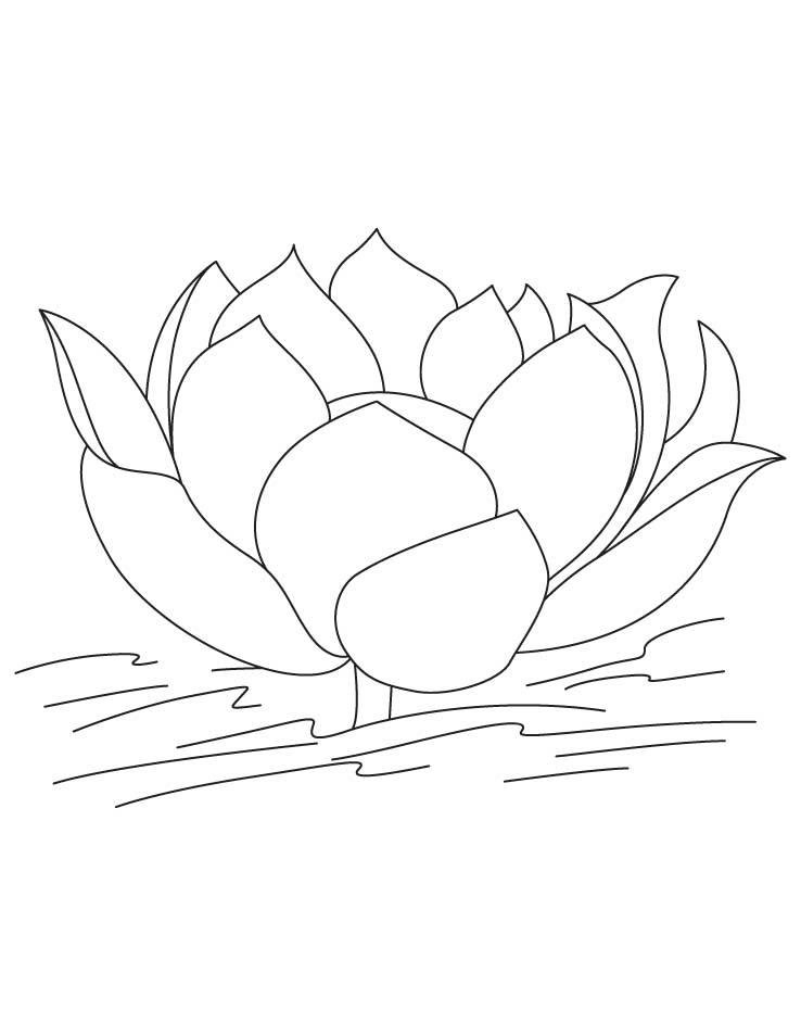 lotus flower coloring pages - photo#27