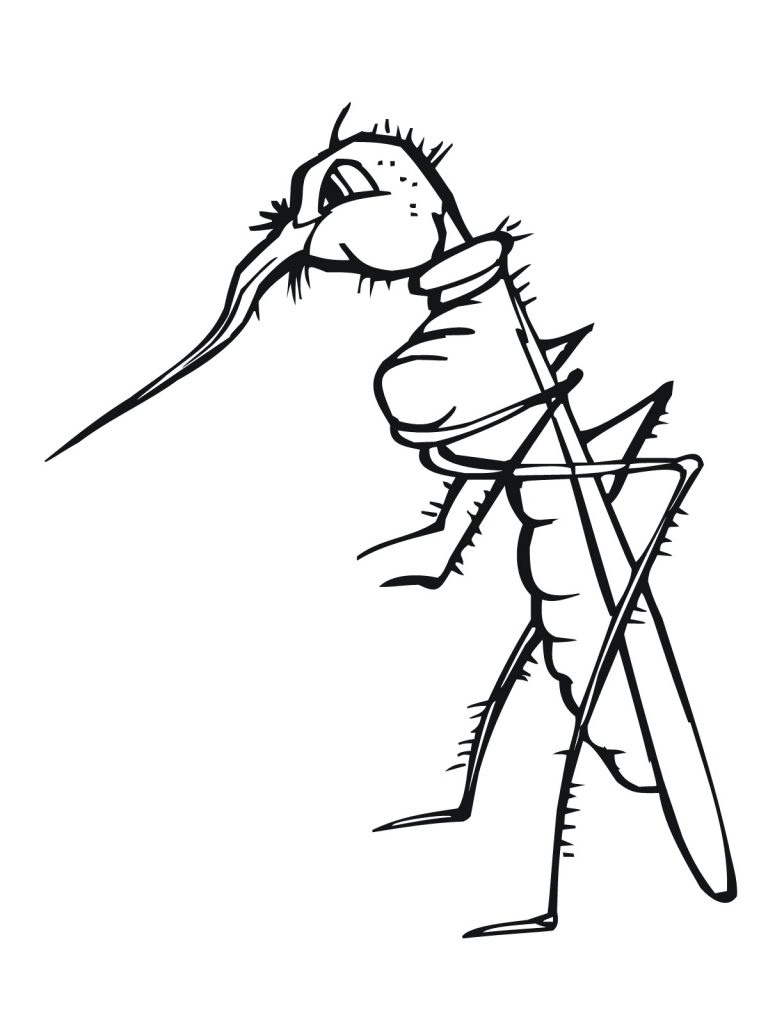 Free Mosquito Coloring Pages