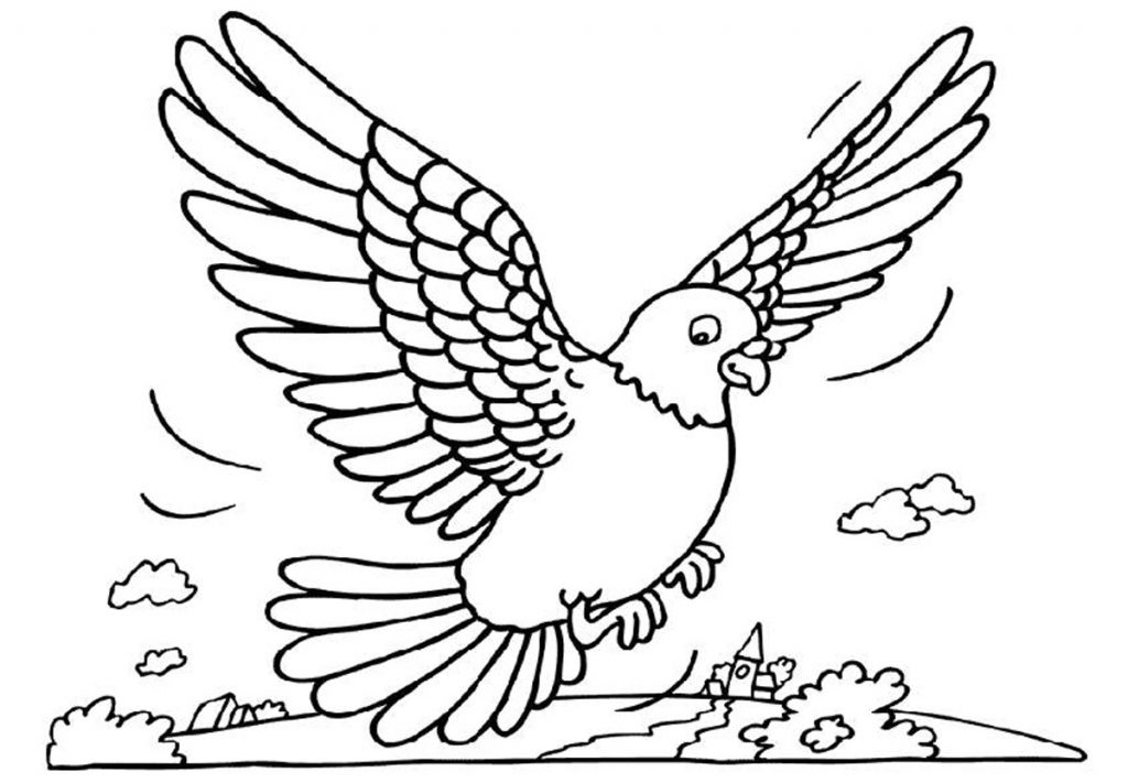 Free Pigeon Coloring Pages