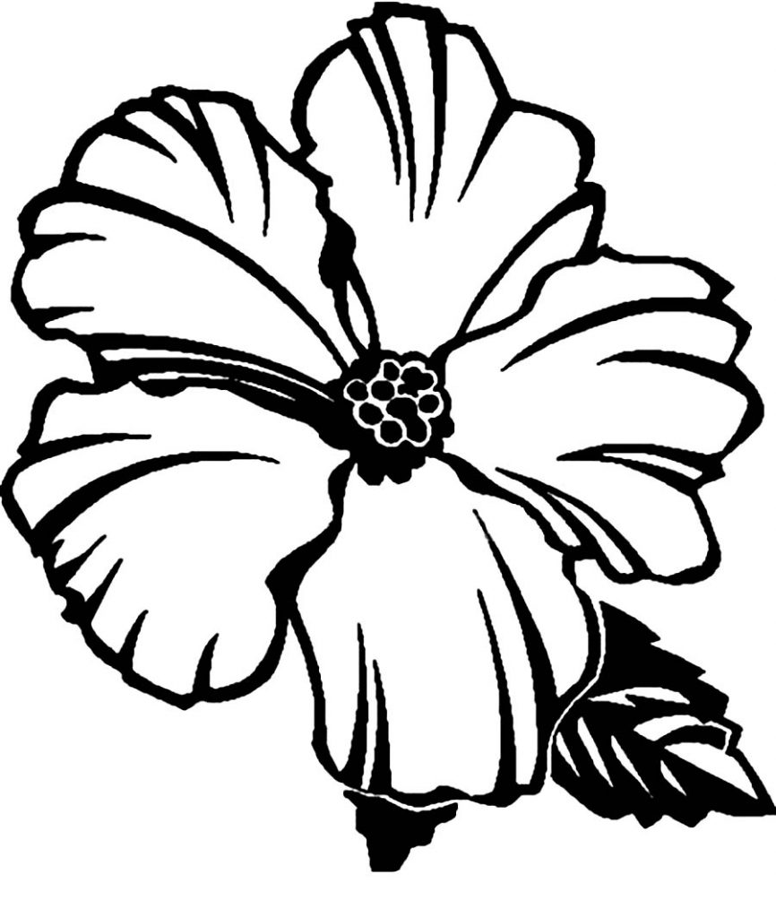 printable hawaiian flowers coloring pages - photo#32