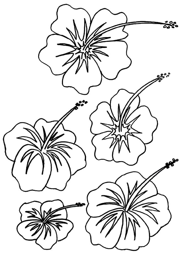printable hawaiian flowers coloring pages - photo#13