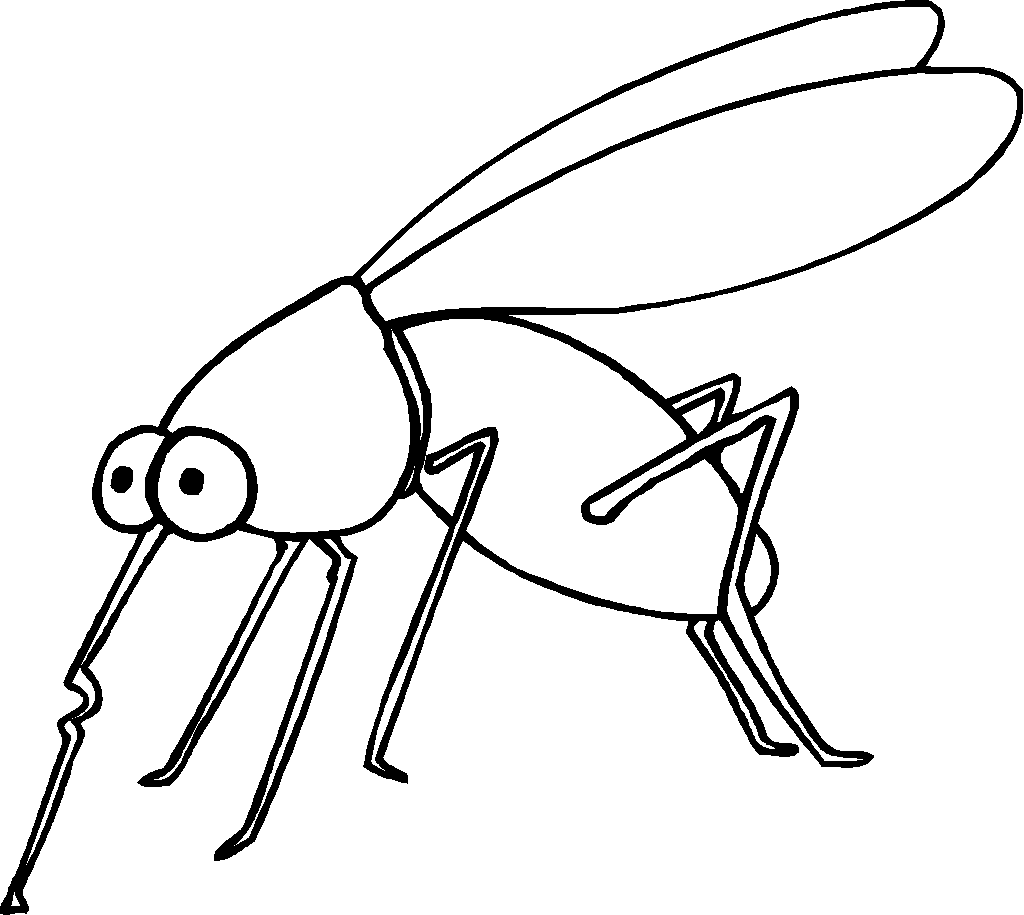 mosquito coloring page - Coloring Page Insect