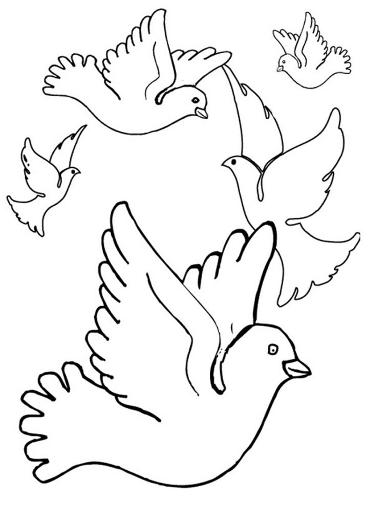 Pigeon Coloring Page Printable