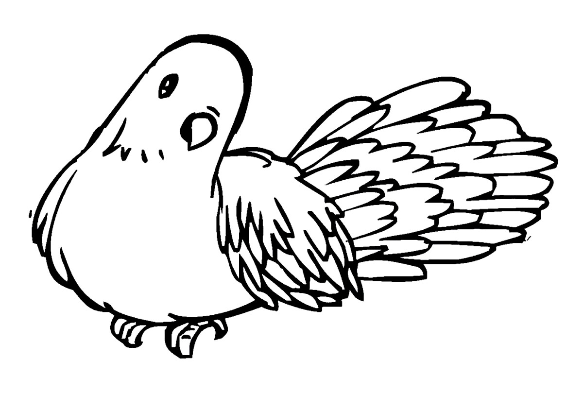 coloring pages pigeon - photo#16