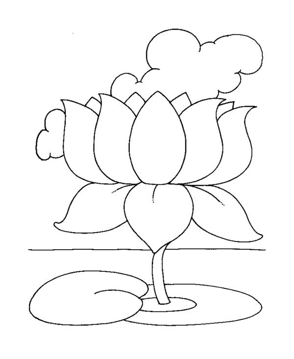 lotus flower coloring pages - photo#36