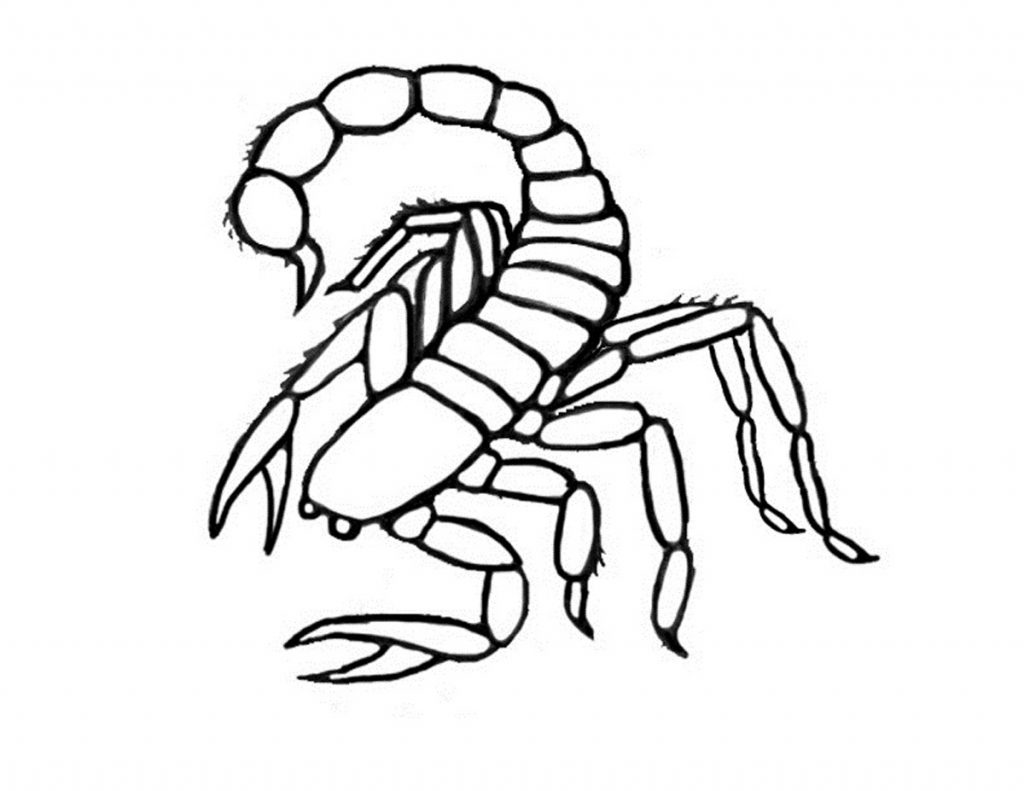 Scorpion Coloring Page