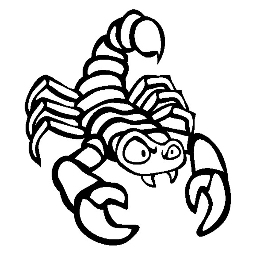 free printable color pages - free printable scorpion coloring pages for kids