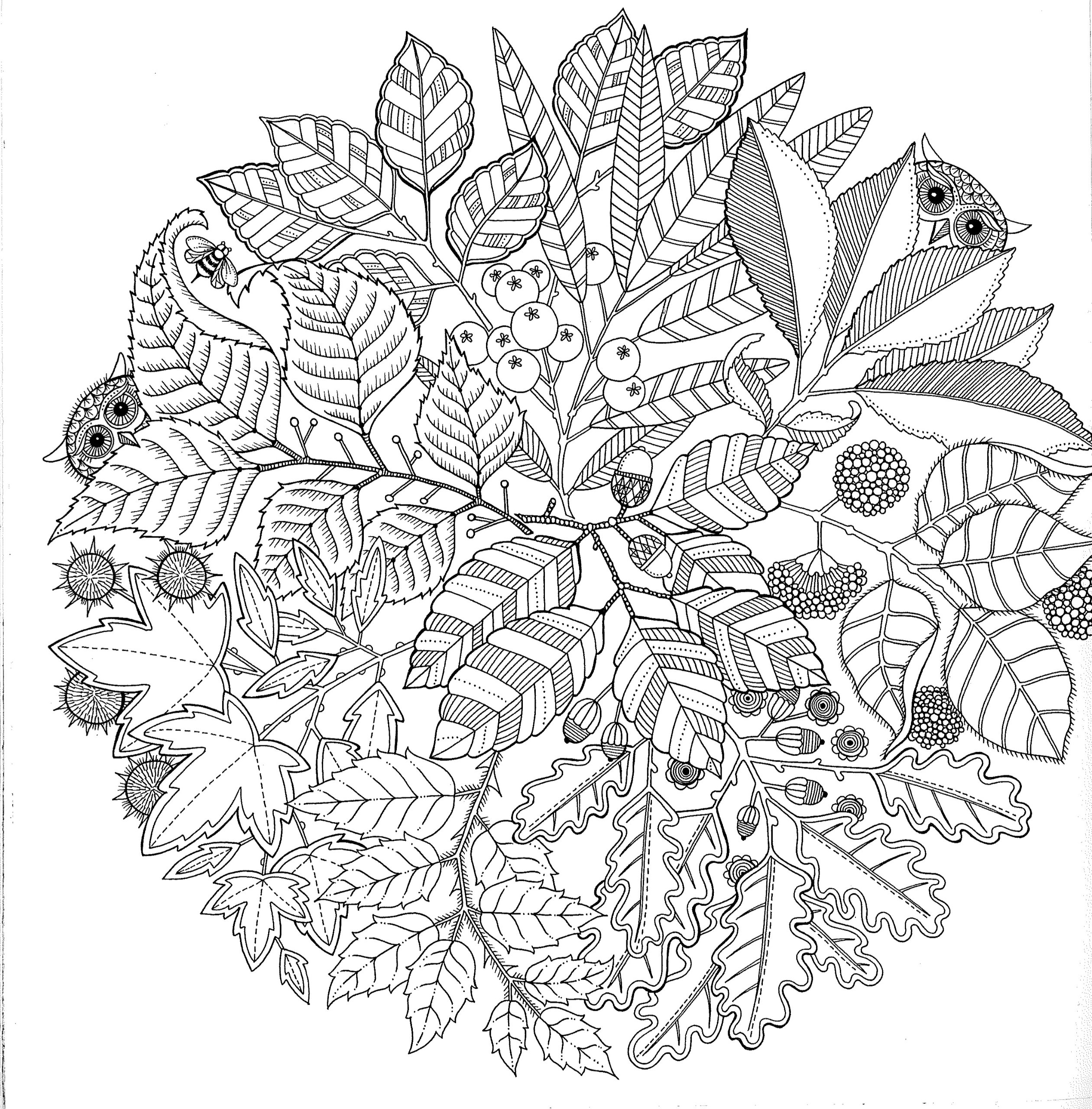 Free printable abstract coloring pages for adults Coloring books for adults johanna basford
