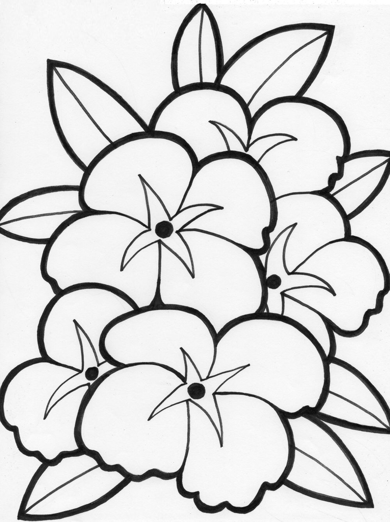 download flower coloring pages - Kids Free Coloring Pages