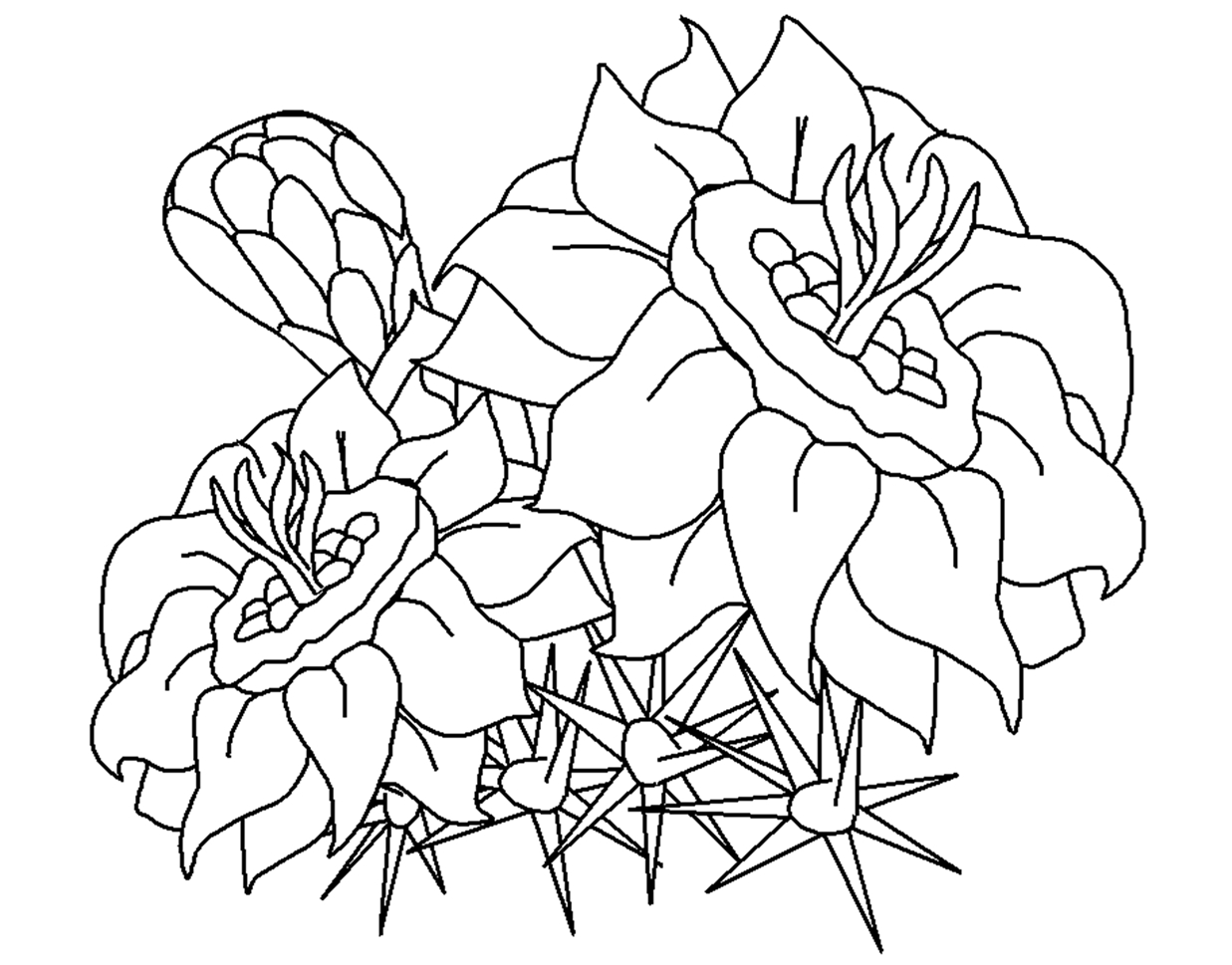 This is a picture of Delicate Printable Flowers Coloring Pages