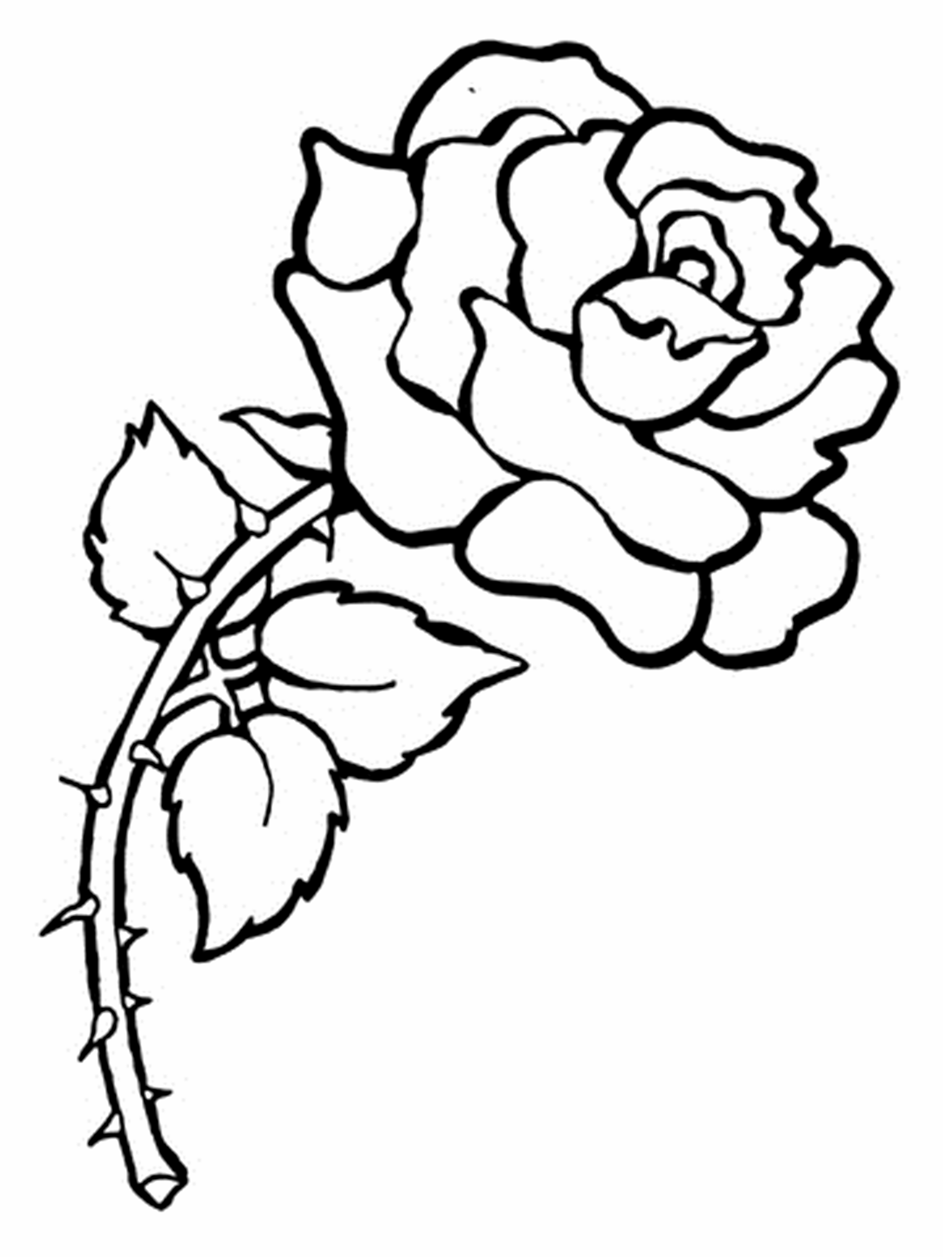 Printable Rose Flower Coloring Apage