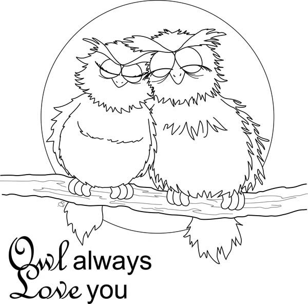 Valentine Coloring Pages - Owls