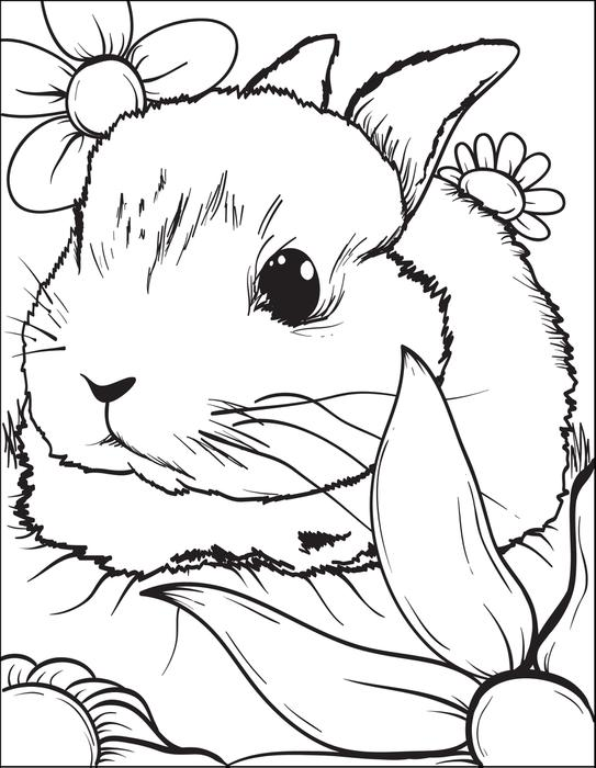 Download Bunny Coloring Page