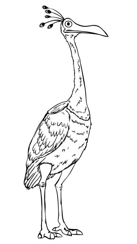 Up Coloring Pages Best Coloring