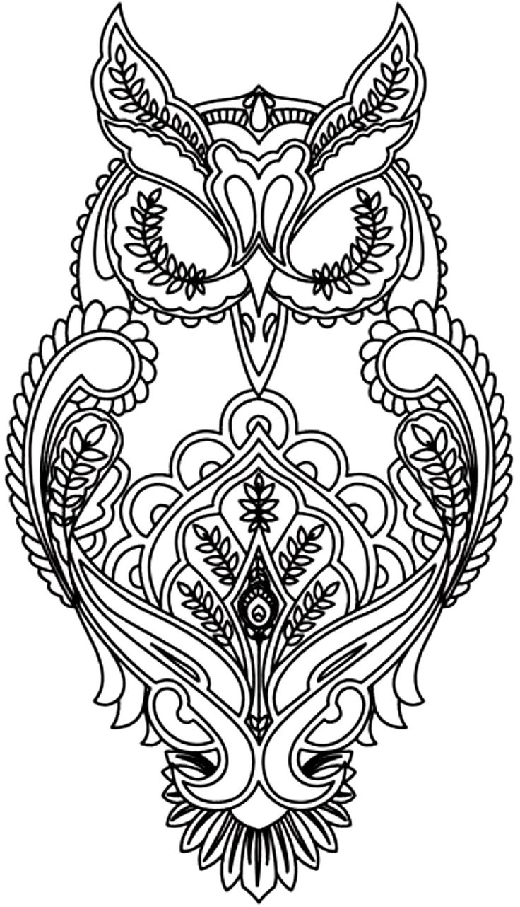 animal coloring pages for adults free owl