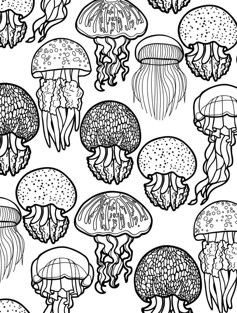 animal coloring pages for adults jellyfish - Jellyfish Coloring Page
