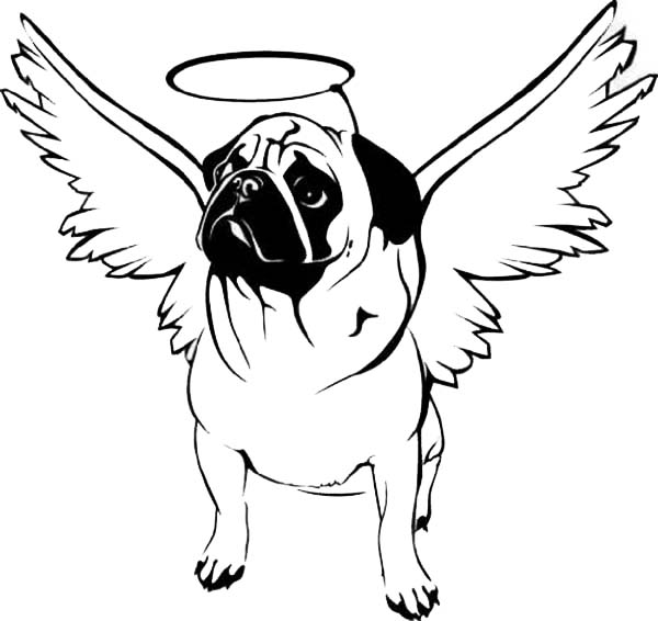 pug coloring pages - photo#13